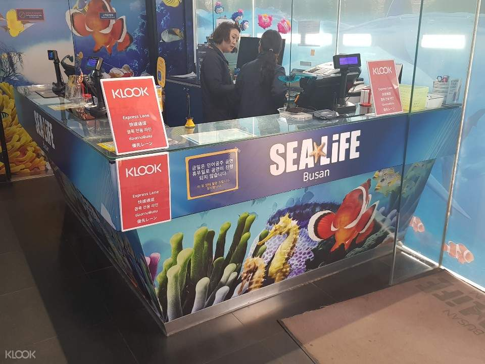 sea life klook express counter